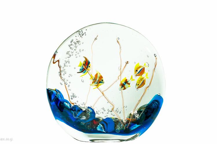 Acquario in vetro di Murano con 5 pesci all'interno
