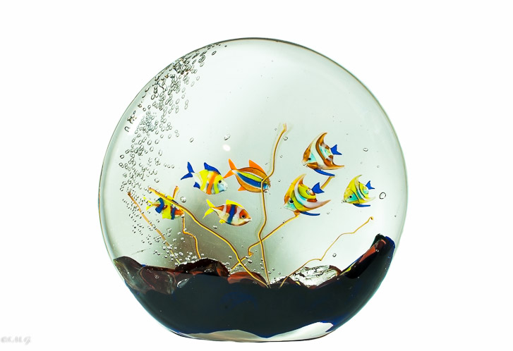 Murano Glass Fish tank in a round shape with 7 fish
