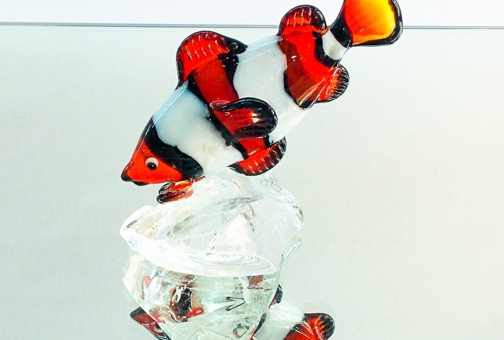 Single clownfish on a clear base
